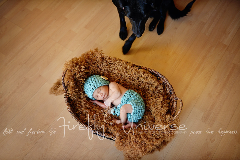 St. Louis Newborn Photographer, St. Louis Newborn Photography, St. Louis Boutique Photography, Baby Photographer, Baby Photography, Newborn Portraits, Newborn Photos, Newborn Family Portraits, Newborn Family Photos