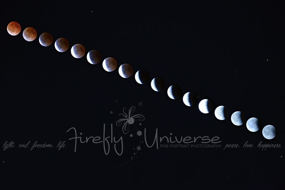 St. Louis Photographer, Blood Red Moon, Passover Moon, Pesach Moon, 2014 Lunar Eclipse