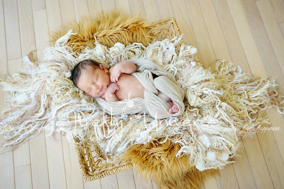 st-louis-newborn-photographer (7)