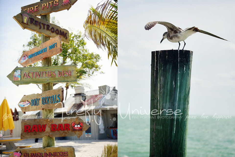 florida-vacation-photographer (18)