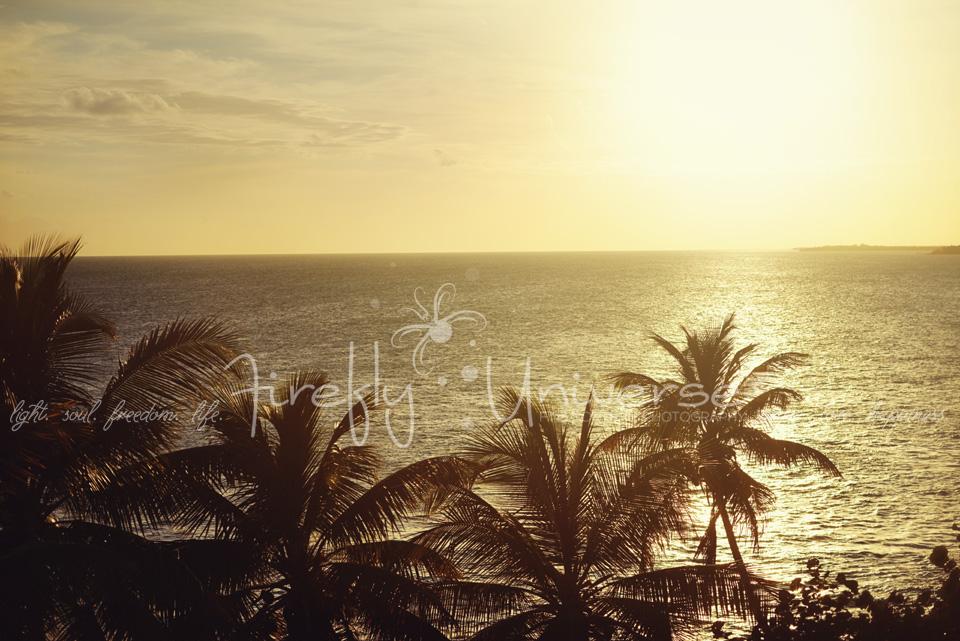 florida-vacation-photographer (37)