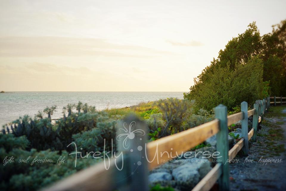 florida-vacation-photographer (39)