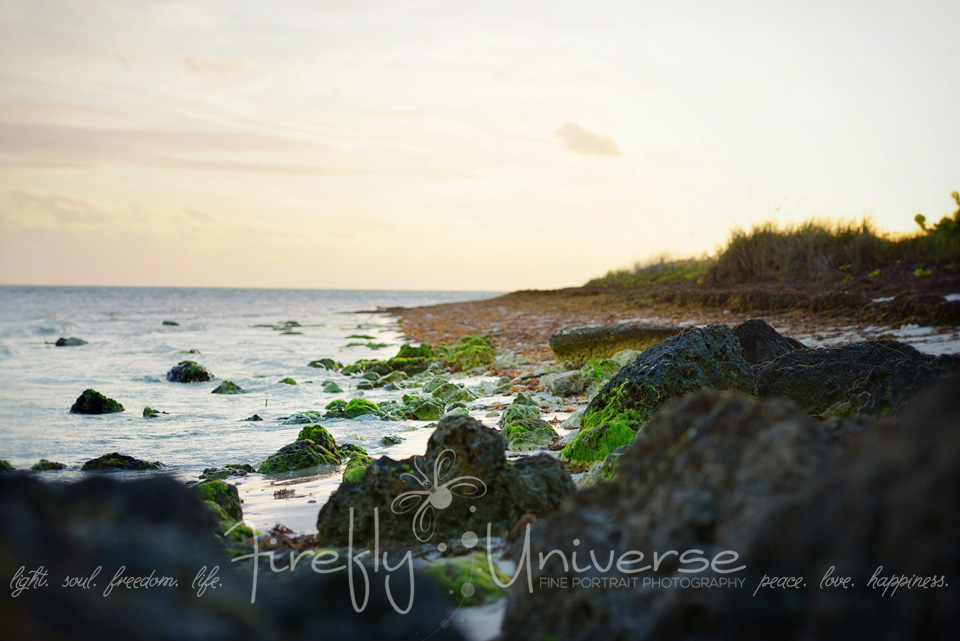 florida-vacation-photographer (40)