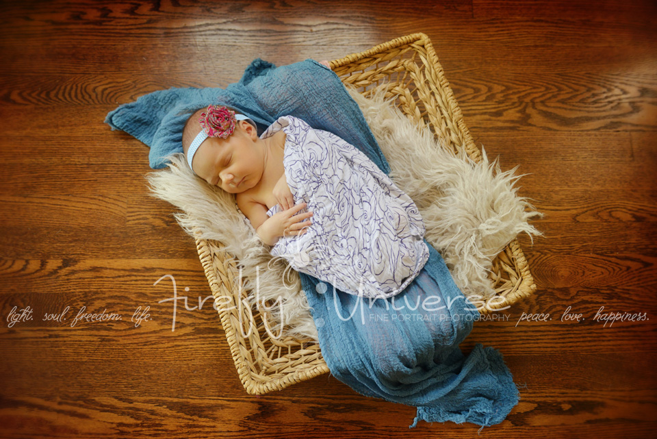 st-louis-newborn-baby-girl-photographer (7)