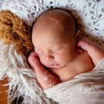 st-louis-newborn-and-big-brother-photographer (6)